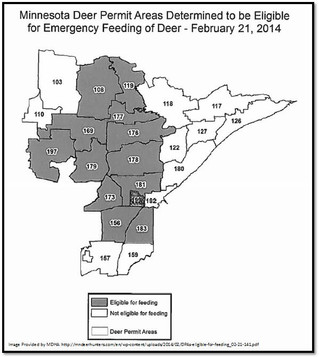 Emergency Deer Feeding in Northern Minnesota