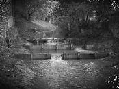 restauration écologique cours d'eau rivière