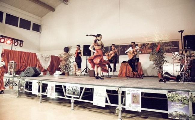 groupe de musicien pour animation espagnole, flamenco rumba, danseuse sur le thème de l'espagne