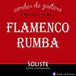 vente en ligne corde guitare flamenco rumba guitare classique nylon