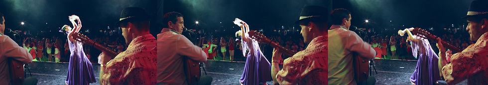 danseuse flamenco, groupe musicien genre espagnol, gipsy, guitariste pour soirée sur le thème de l'Espagne