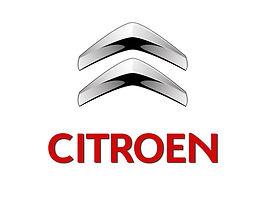 Animation pour apéritif clientelle entreprise Citroen, flamenco rumba animation