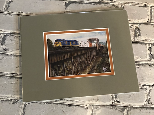 CSX Tropicana Juice Train Post card size - matted