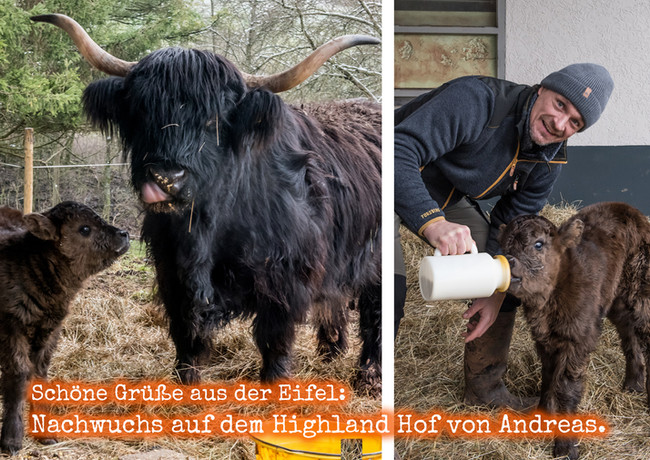 FB_Andreas_HighlandHof_Kälbchen_Post-01-