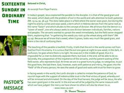 Pastor's Message - 122 Sixteenth Sunday