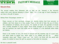 Pastor's Message - 24 Fifteenth Sunday i