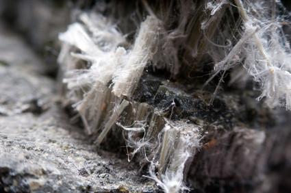 What is the Loose-Fill Asbestos Taskforce in Sydney, Australia?