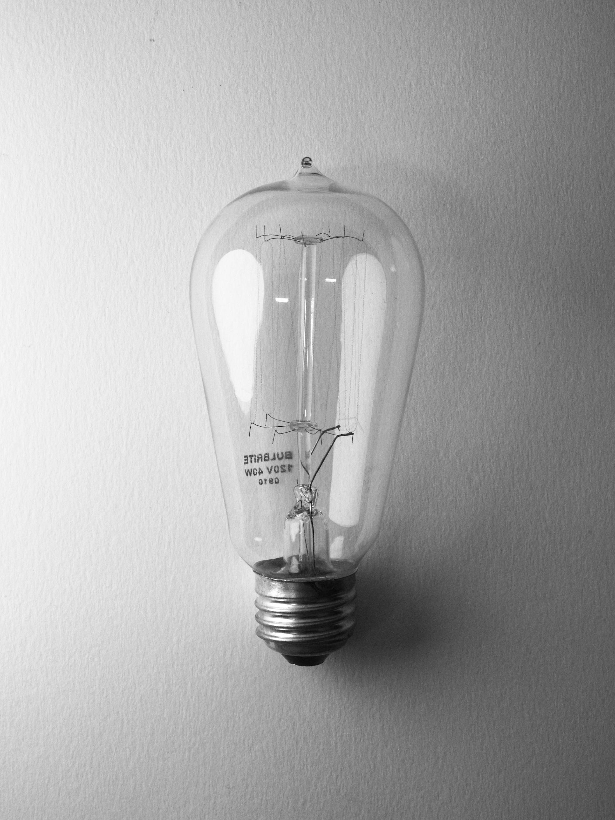 Malorie's Bulb