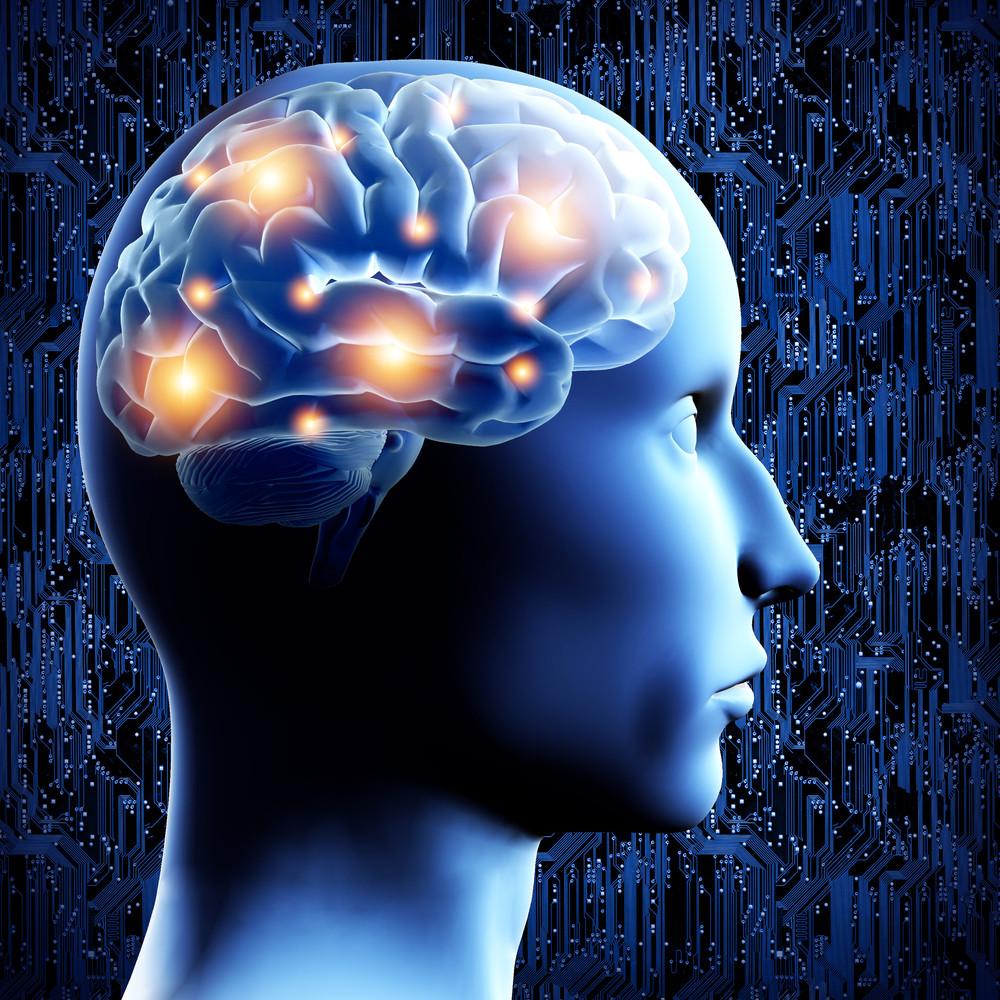mindfulness, human brain, neurons