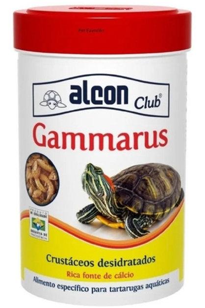 Gammarus Alcon Tartarugas