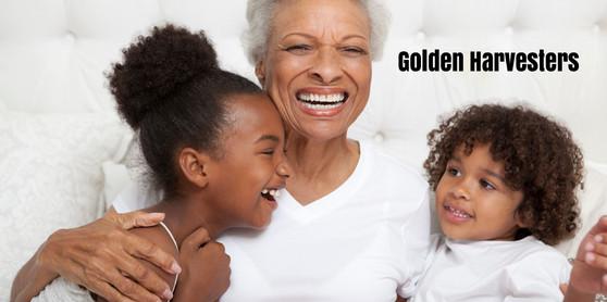 Golden Harversters