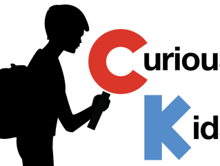Curious Kids: what makes an echo?