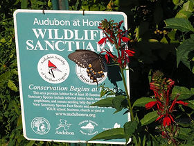 Audubo at Home Wildlife Sanctuay