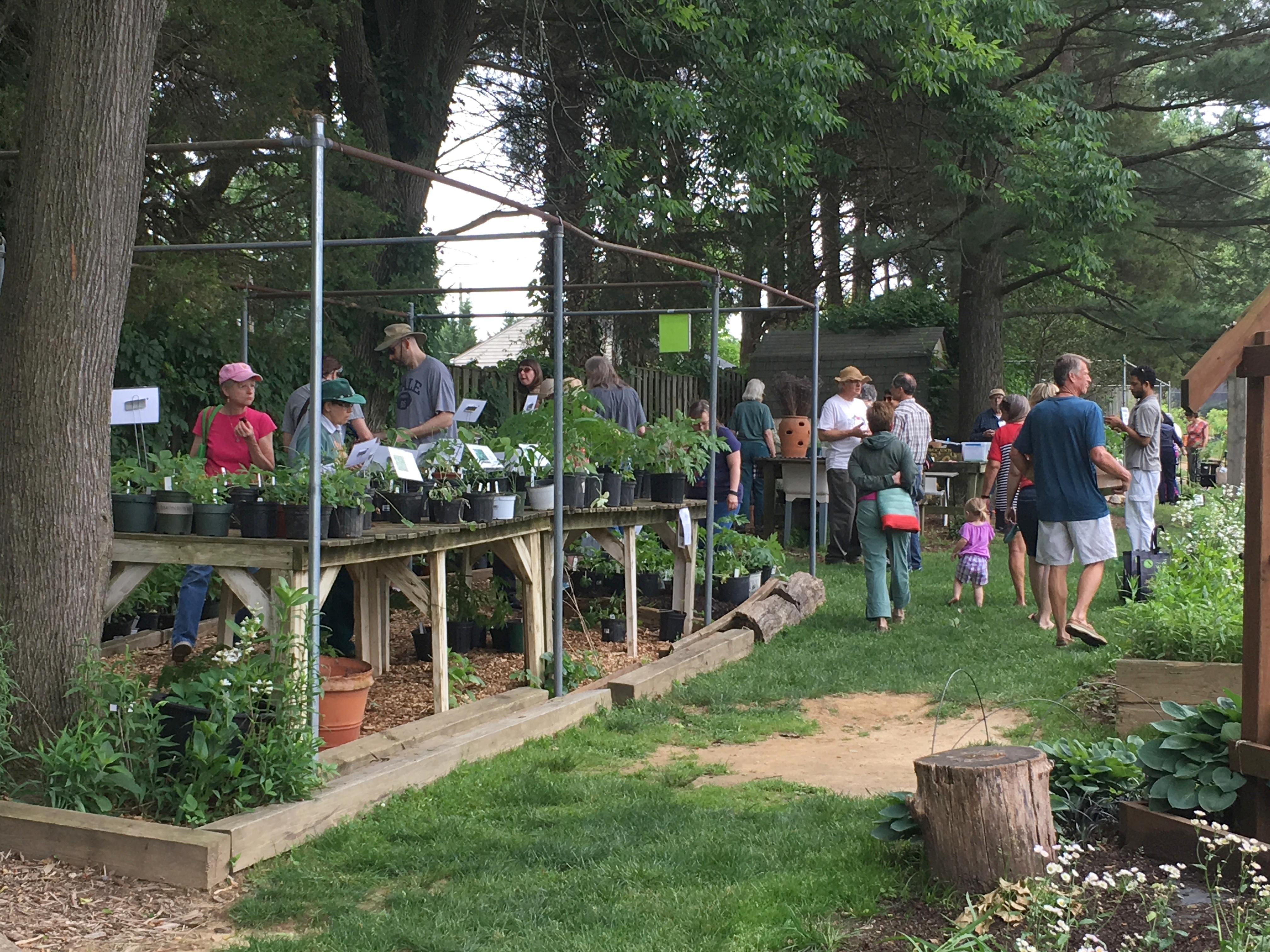 May 2017 VNPS Pot plant sale