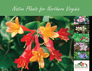 Nativ plans for northern virginia guide book
