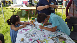 April 2017 Native plants coloring banner at Springfest
