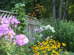 Garden phlox, black-eyed Susan, Turks cap lily, Joe pye weed