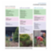 brandes_book-15.jpg