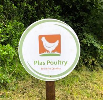 Plas poultry.tiff
