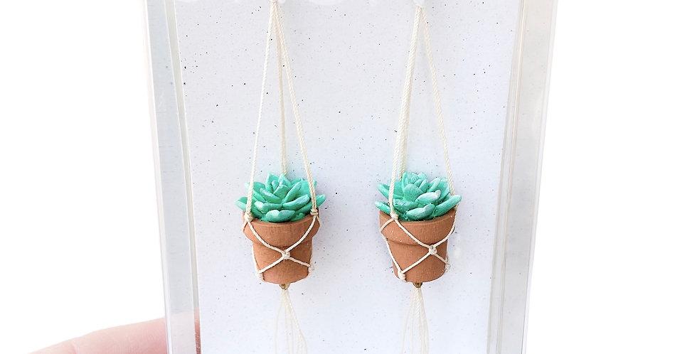 Echeveria Plant Earrings - Green