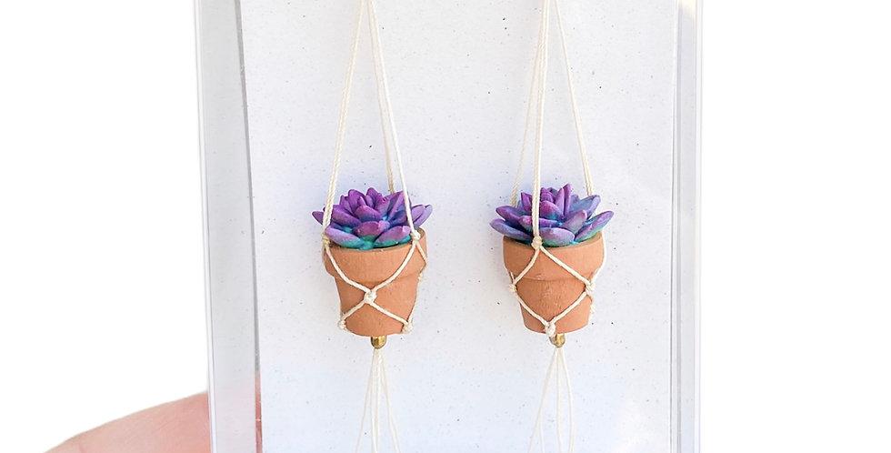 Echeveria Plant Earrings - Purple