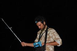 Radiotracking on stag beetles