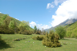 National Park Abruzzo Lazio Molise