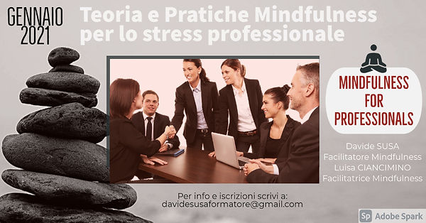 Mindfulness for professional.jpg