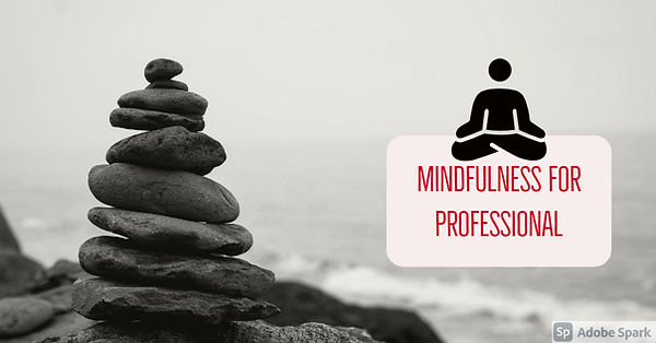 Mindfulness for Professionals.jpg
