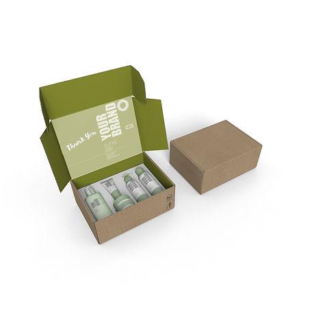 BOX012.jpg