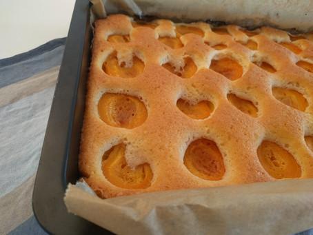 flaumiger Marillenkuchen