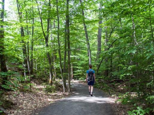 ¡Pases gratuitos a los parques provinciales durante todo el verano!