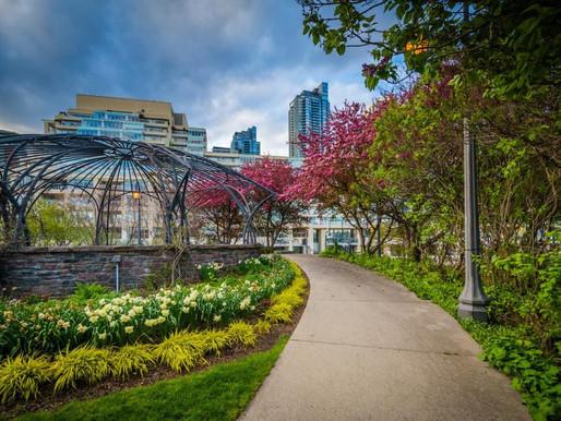 10 cosas para hacer en Toronto en este primer fin de semana de junio