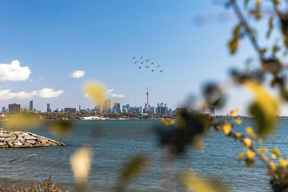 Hoy comienza un tramo cálido de clima primaveral para Toronto y el GTA.