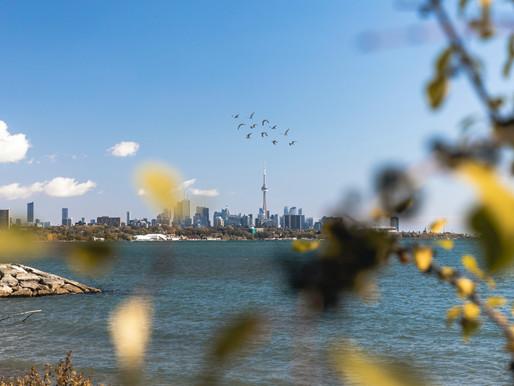 El pronóstico indica un tramo cálido de clima primaveral para el GTA
