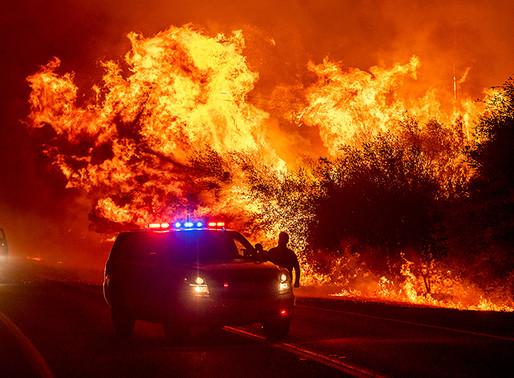 500,000 huyen de los incendios forestales