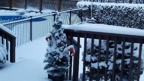 Nieve en Mississauga el 25 de diciembre de 2020.