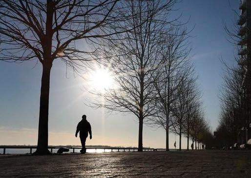 Ontario informa caída en casos nuevos