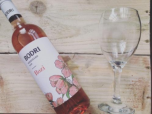Bodri, Rozi Rose - 2019
