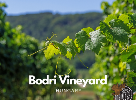 Welcome to the Bodri Family vineyard - Szekszard
