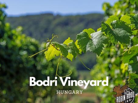 Welcome to the Bodri Family vineyard - Szekszard