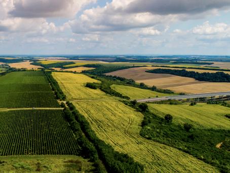 Hungarian Wine: Szekszárd