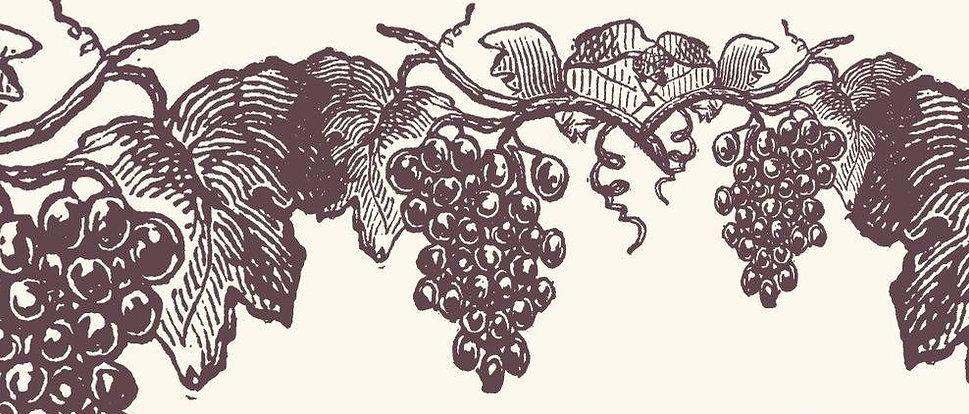 vine wine.jpg