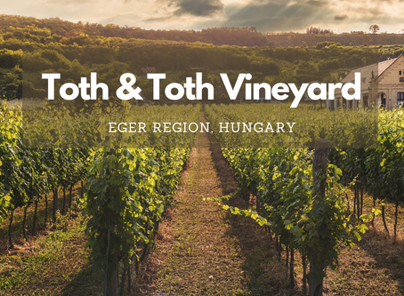 Hungarian Wine: Tóth es Tóth Vineyard