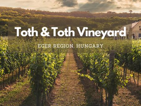Hungarian Wine: Tóth es Tóth Vineyard