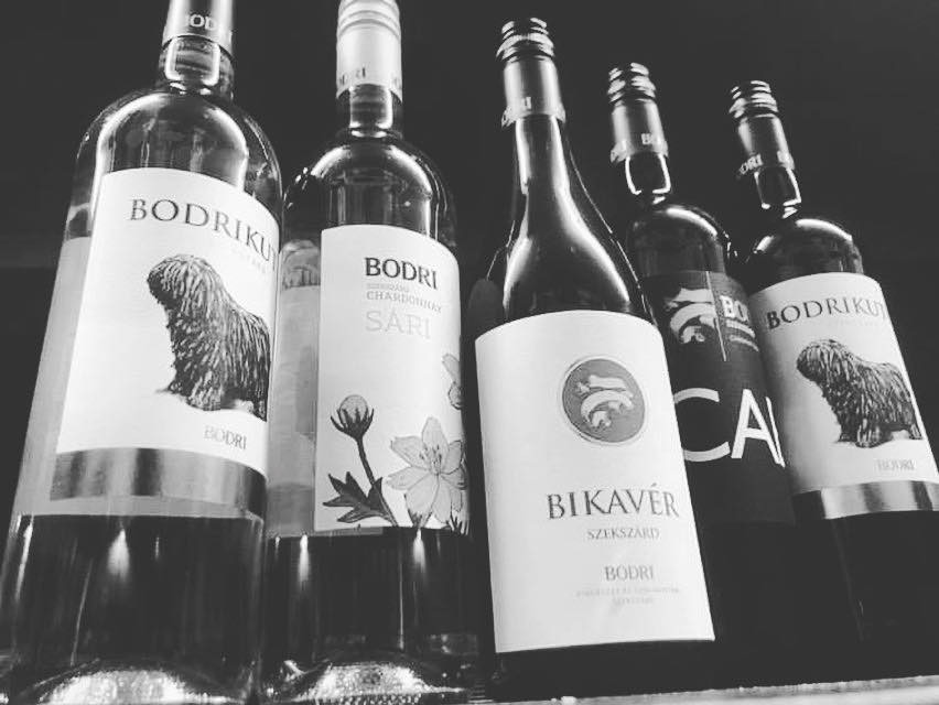 Hungarian wine selection, Bodri vineyard, bulls blood, Cuvee, chardonnay, cabernet sauvignon, online wine cellar