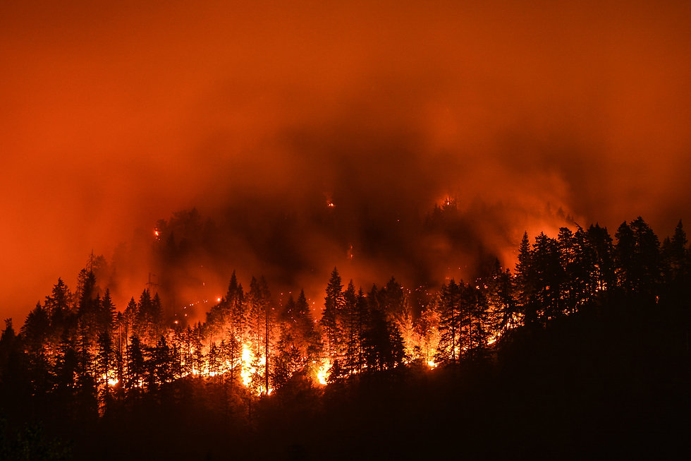 Eagle Creek Wildfire in Columbia River G