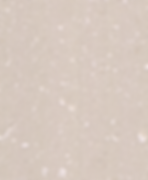 LQ2540-butter-cream-zoom-247x300.png