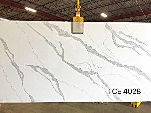 TCE4028.jpg