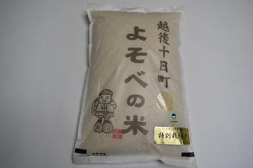 特別栽培米「よそべの米」 玄米10kg